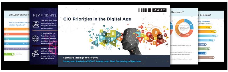 CIO Priorities in the Digital Age