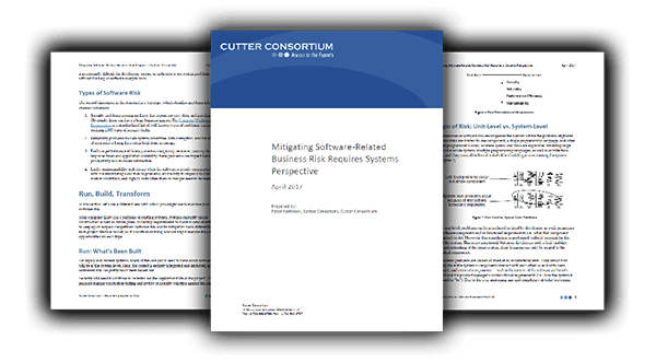 Mitigating Software-Related Business Risk Requires Systems Perspective